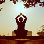 yogi at sunset